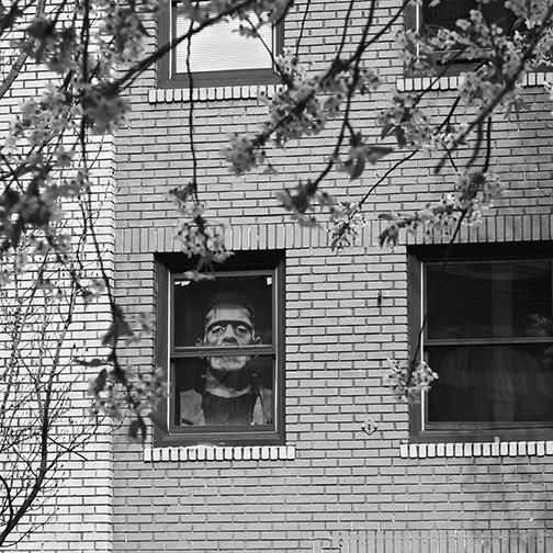 Frankenstein Lived on East Union
