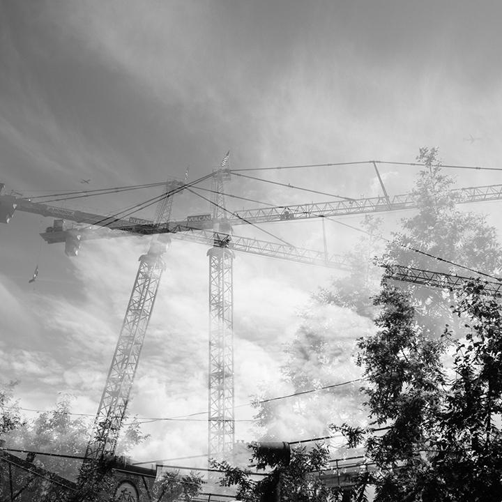 Double Cranes, Double View